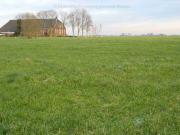 Hier heeft de kerk van Ellerhuizen  gestaan, met op de achtergrond boerderij Ellerhuizen 27